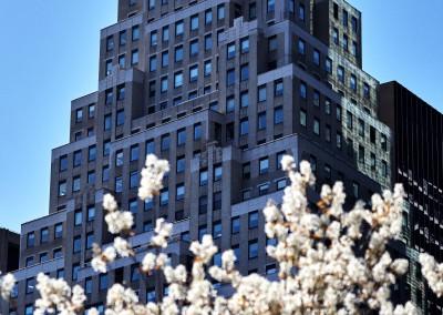 wall_street_skyscraper